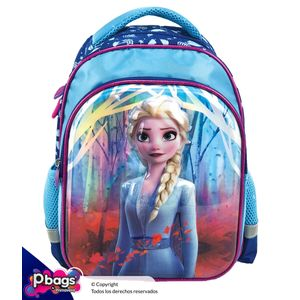 Morral-13--Backpack-Frozen-II-Relieve