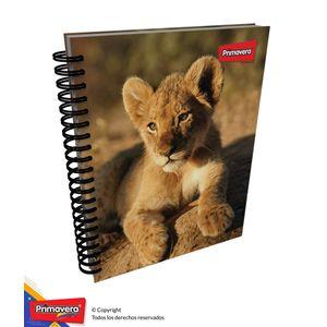 Cuaderno-5M-105-Mixto-Mujer-01