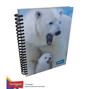 Cuaderno-5M-105-Mixto-Mujer-02