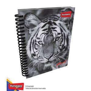 Cuaderno-5M-105-Cuadros-Hombre-01
