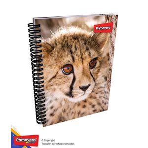 Cuaderno-7M-Arg-Mixto-Mujer-01