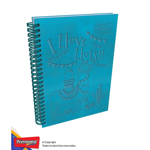 Cuaderno-5M-Arg-Tex-Mixto-Mujer-01