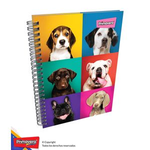 Cuaderno-85-Pd-Cuadros-Mujer-01