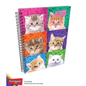 Cuaderno-85-Pd-Cuadros-Mujer-02