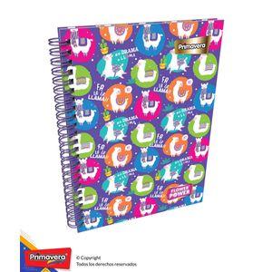 Cuaderno-85-Pd-Cuadros-Mujer-10