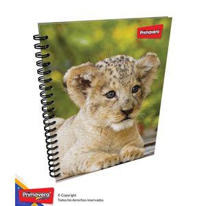 Cuaderno-105-Pd-Rayas-Mujer-01