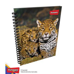 Cuaderno-105-Pd-Rayas-Mujer-02