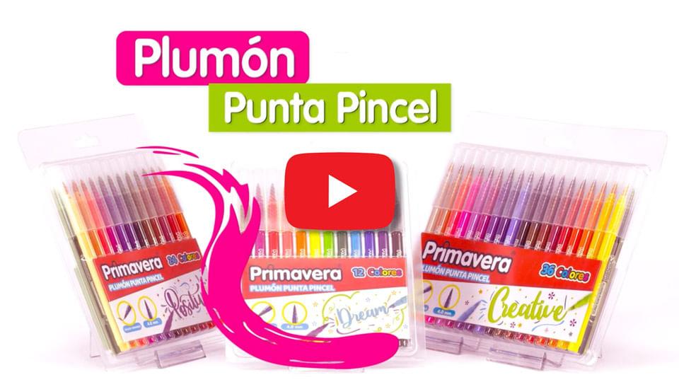 Video Plumón Punta Pincel